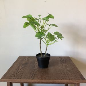 "Fake Plant 18"" for Sale in Los Angeles, CA"