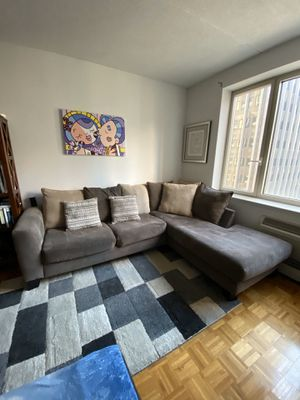 Couch, pillows, rug for Sale in New York, NY