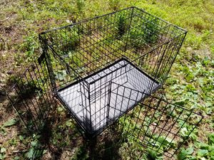 Large Dog Crate for Sale in Chapel Hill, NC