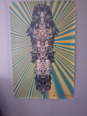 A Wiser Bud Poster 22x34 for Sale in Sunnyvale, CA