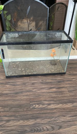 Fish/ Amphibian Tank for Sale in Marlow Heights, MD