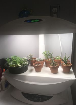 Aero Garden 7 Growing Stations for Sale in Denver, CO