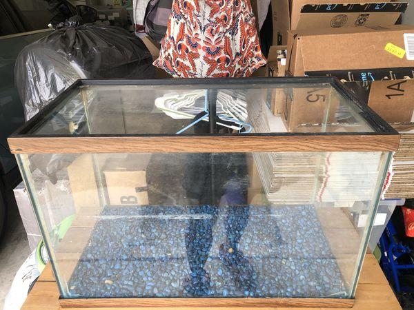 20 Gallon Tall Aquarium/Fish Tank Only
