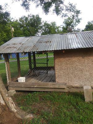 Huge dog house for Sale in Nashville, TN