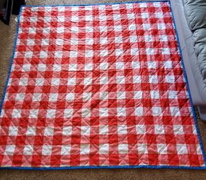Large Picnic Blanket for Sale in Tampa, FL
