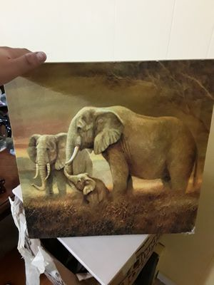 Elephant canvas for Sale in Alpena, MI