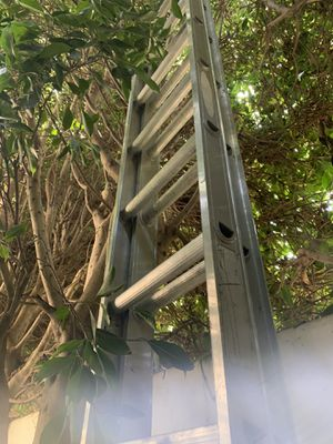 Extension ladder for Sale in Los Angeles, CA
