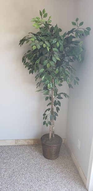 2 fake tree plants for Sale in Chandler, AZ