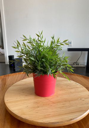 Fake plant for Sale in Los Angeles, CA