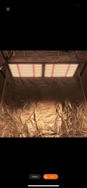 King Brite 240 Watt UV IR 3500k v4 L.E.D Grow Lights for Sale in Hayward, CA