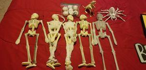 Skeletons for Sale in Hampton, VA