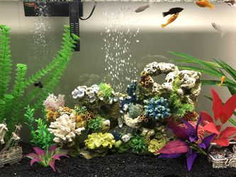 Fish Tank for Sale in Huntington Beach,  CA