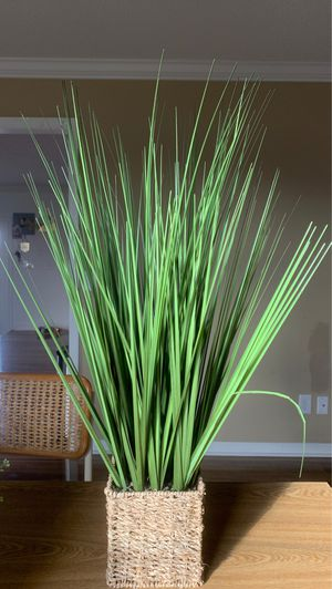 Fake house plant for Sale in Columbia, TN