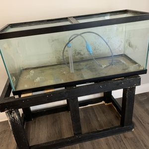 75 Gallon Fish Tank W Stand for Sale in Tampa, FL
