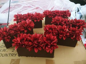 Pier 1 Decorative Potted Dahlia Flowers for Sale in Waddell, AZ