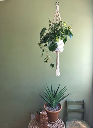 Spiral macrame Plant Hanger for Sale in Lakeside, CA