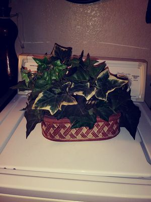 Fake house plant for Sale in Fresno, CA