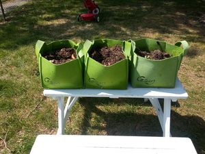 Three grow boxes (3 gallon) for Sale in Pleasant Hill, IA