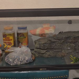 Fish Tank In Very Good Condition Include Everything Show. for Sale in Glendale, AZ