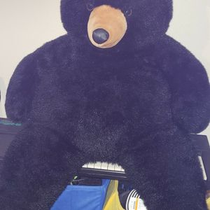 Giant Teddy for Sale in Spring Hill, FL