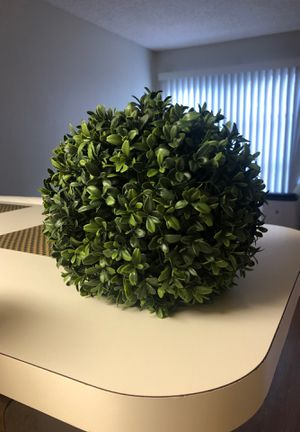 Fake Plant for Sale in San Diego, CA