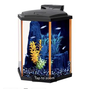 Neon fish Tank for Sale in Parker, CO