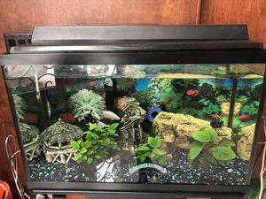 30 gallon fish tank for Sale in Winter Park, FL