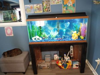 Fish Tank Everything Included 55gallon for Sale in Lorain,  OH