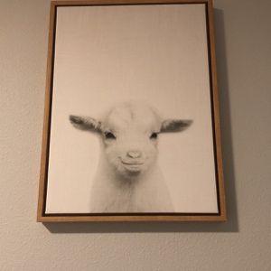 Framed Canvas Print for Sale in Apopka, FL