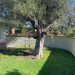 Tree Swing Hanging Pots Wind Chime Birdcage for Sale in Newport Beach,  CA