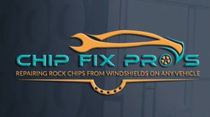 Rock chip repair services for Sale in Tampa, FL
