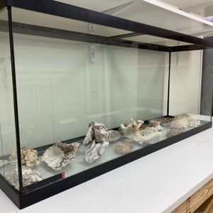50 Gallon Fish Tank w Authentic Seashell Collection! 🐚 🐠 for Sale in Seattle, WA