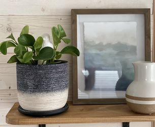 Ceramic Black & Beige Planter Pot for Sale in St. Cloud,  FL