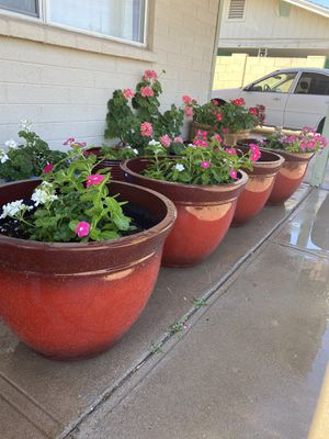 Huge Red plastic planter with plants for Sale in Tempe, AZ