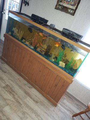 125 gallon fish tank with everything included for $475 serious inquiries only must pick up for Sale in Edna, TX