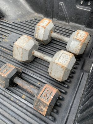 100 pounds of dumbbell weights for Sale in Palm Harbor, FL