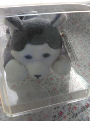 Ty Beanie Baby Nanook for Sale in Buena Park, CA