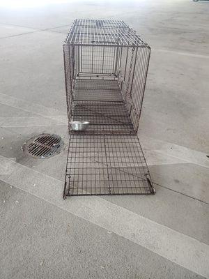 Hog Trap $10.00 for Sale in Azalea Park, FL