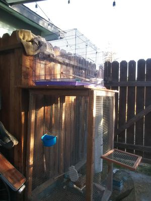 Bird cages for Sale in Clovis, CA