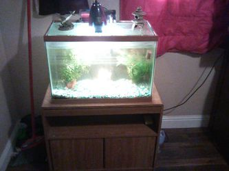 25 Gallon Fish Tank And Stand for Sale in Fresno,  CA