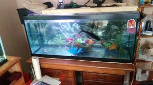 Fish tanks for Sale in Niagara Falls, NY
