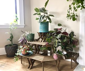 Indoor/Outdoor Rustic Brown Wood Plant Stand Shelf for Sale in Boston, MA