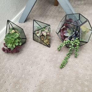 Black Geometric Terrariums (Faux Succulents Included) for Sale in Gilbert, AZ