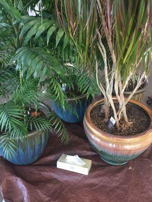 """Ceramic planter pots -18"""" x 15"""" for Sale in Aurora, CO"""