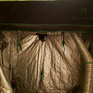 Grow Tent Full Set Up ,600w ,5x4 ,Foot Space for Sale in Sloan, NV