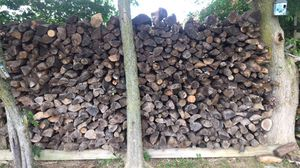 Truckload of wood for Sale in Delaware, OH