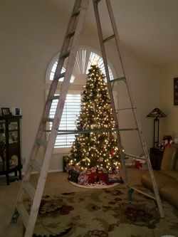 12' Ladder for Sale in Henderson,  NV