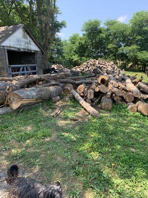 Fire wood for Sale in Haymarket, VA
