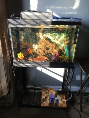 20 gallon tank with stand for Sale in Chicago Ridge, IL