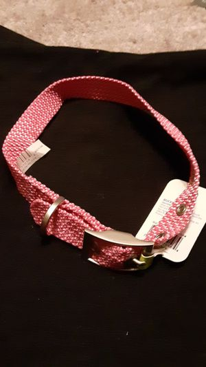 BRAND NEW (M) FEMALE DOG COLLAR for Sale in Denver, CO